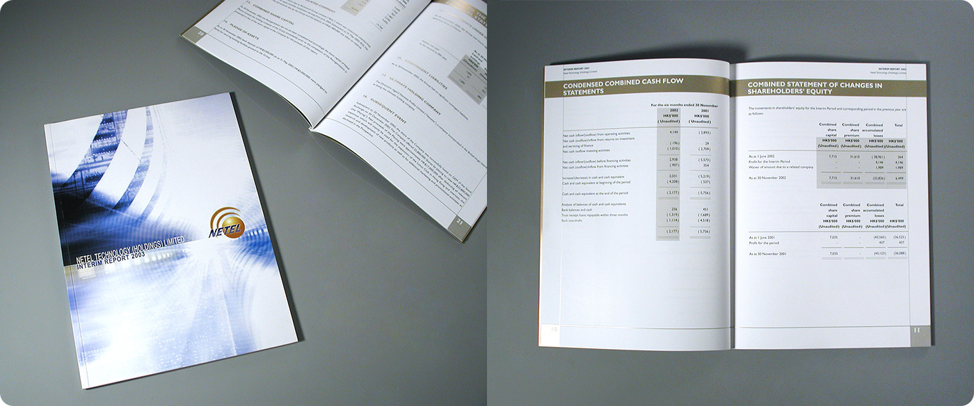 NETEL Technology Holdings Group Annual Report Design